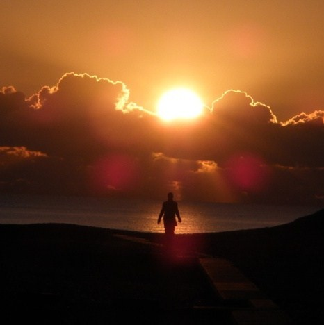 "Poem: ""This Morning I Pray for My Enemies,"" by Joy Harjo"