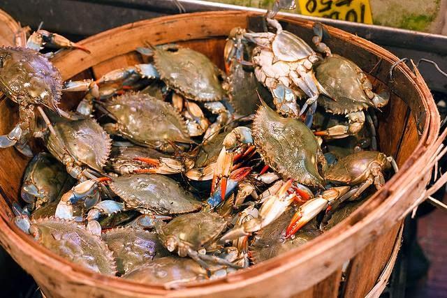 Crabs In The Bucket Compassionate San Antonio