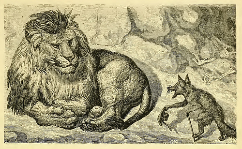 The Little Fox and the Lion