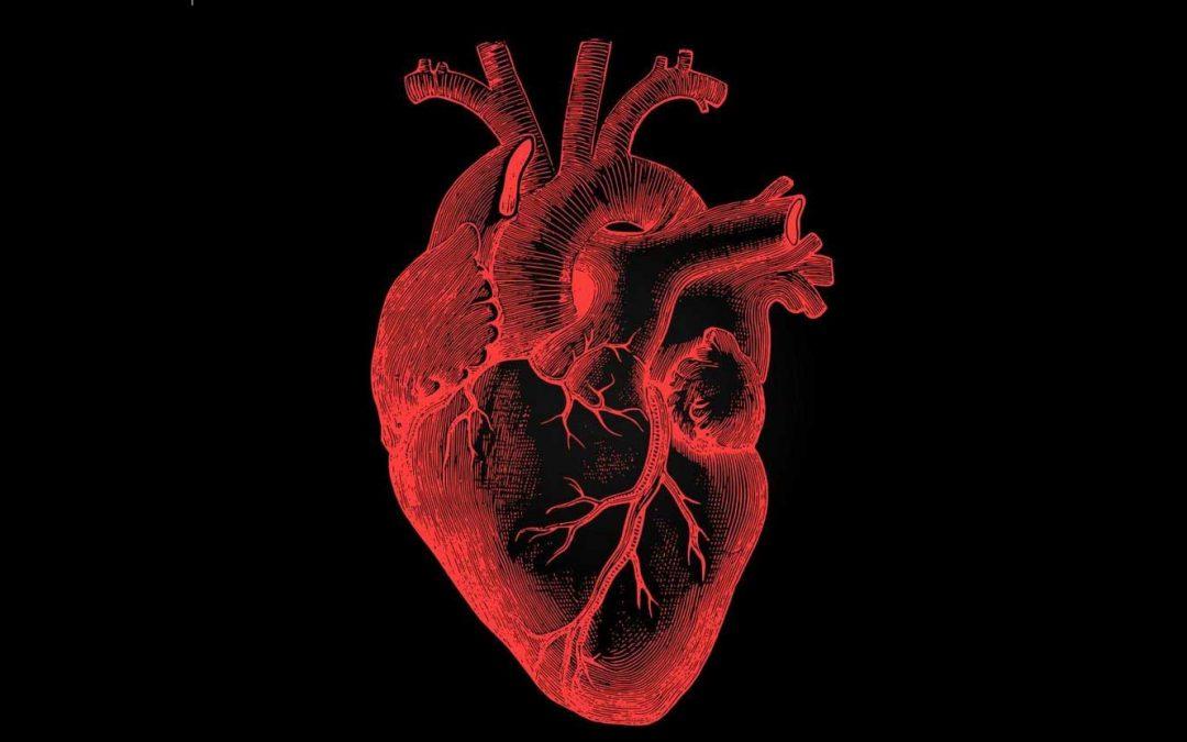 """Poem: """"Take Heart,"""" by Jeanne Murray Walker"""