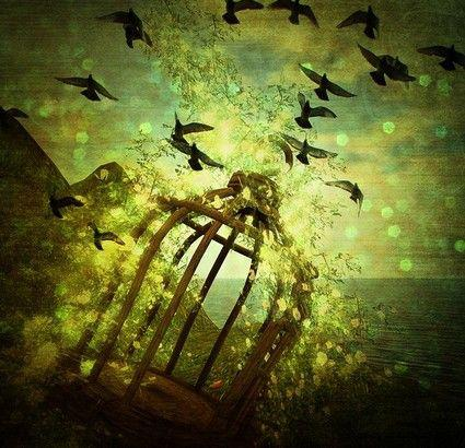 Rumi and the Caged Bird