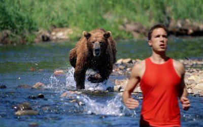 "POEM: ""Bear in Mind,"" by John Martin"