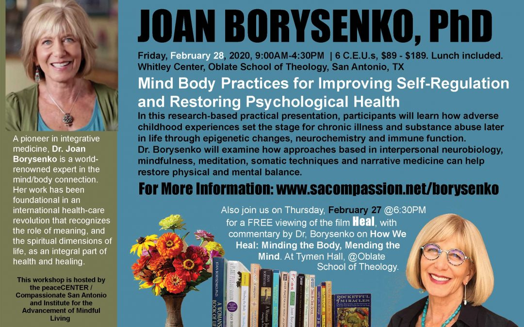 5th Annual Psychology Workshop: Joan Borysenko, 28 February, 2020