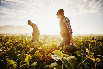 Two Farming Brothers